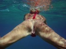 Chatte sous l'eau