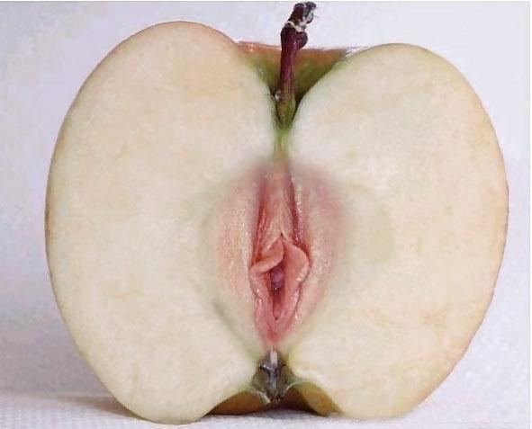 sex rencontre sexe humour