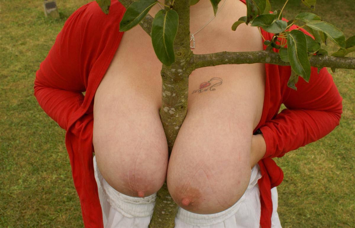 Arbre entre les seins - Sexe adulte